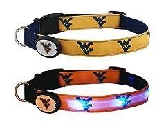 West Virginia University LED Collar - L