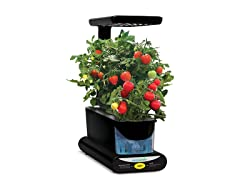 AeroGarden Sprout LED with Gourmet Herbs