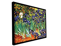 Van Gogh Irises in the Garden - Framed
