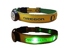 University of Oregon LED Collar - Medium