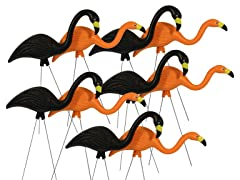 Bloem Halloween Flamingo Yard Stakes 10-pack