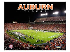 "Auburn Tigers Stadium 8"" x 10"""