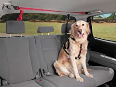 PupZip™ Vehicle Zipline