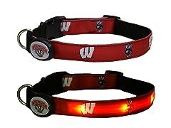 University of Wisconsin LED Collar - M