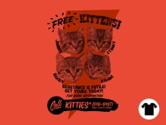 Kitty Gratis