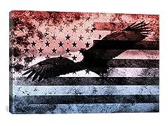 Bald Am. Eagle