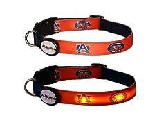 Auburn University LED Collar - Med