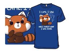 Forgetful Red Panda