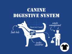 Canine Biology, Explained