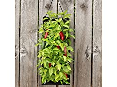 Organic Hanging Pepper Bag - Your Choice