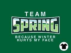 Team Spring