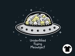 Unidentified Flying Meowbject