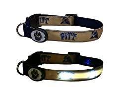 University of Pittsburgh LED Collar - M
