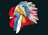 Chief Many Feathers