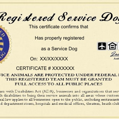 .com : registered service dog certificate - customized with ...