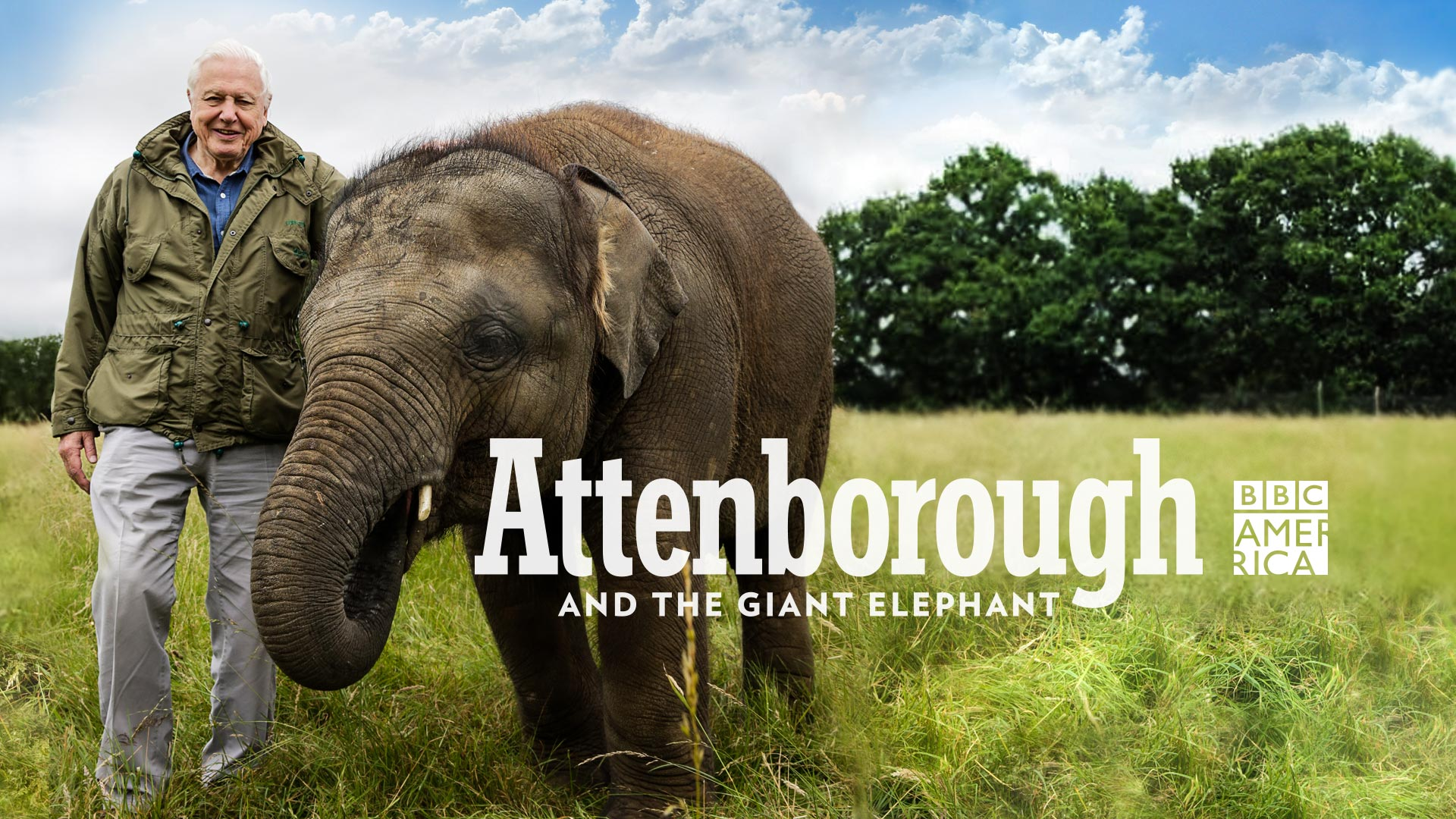 Attenborough and the Giant Elephant, Season 1