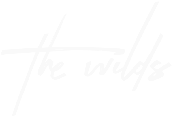 The Wilds: Vidas Selvagens