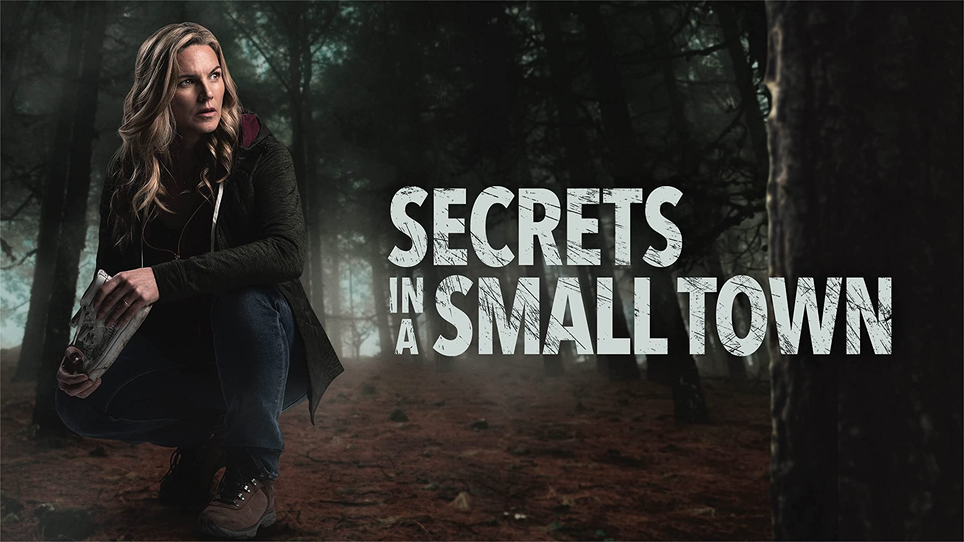 Secrets in a Small Town