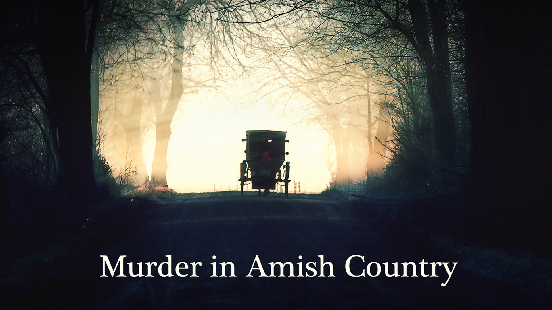 Murder in Amish Country - Season 1