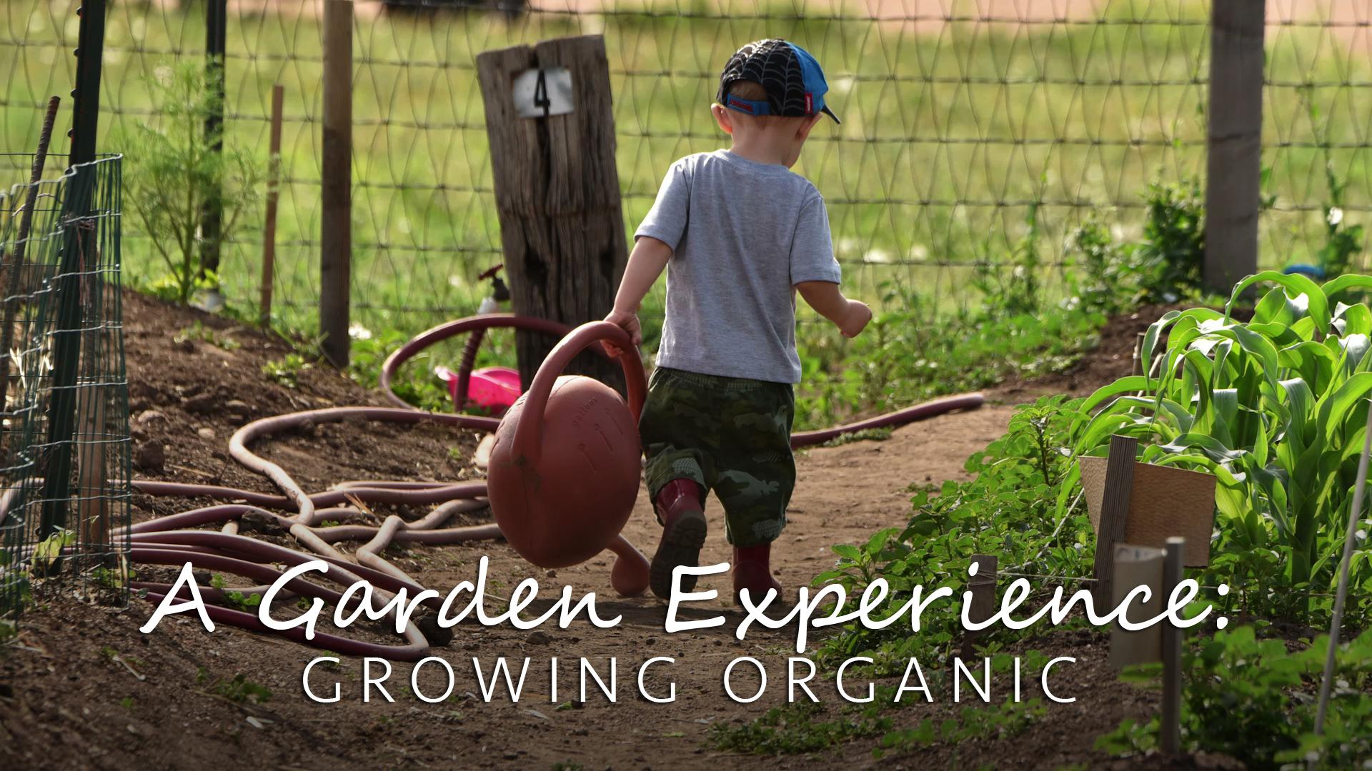 A Garden Experience: Growing Organic