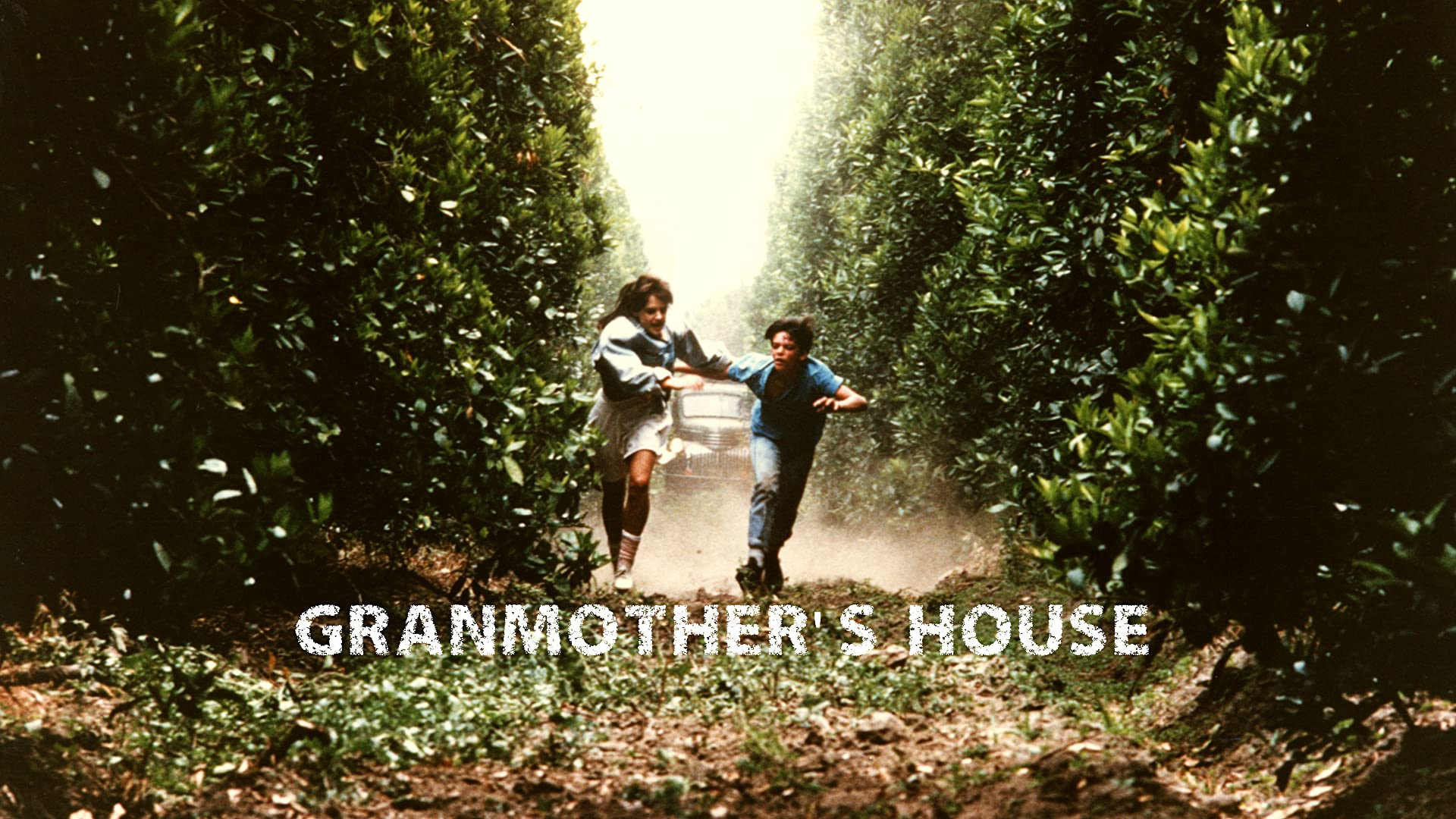 Grandmother's House