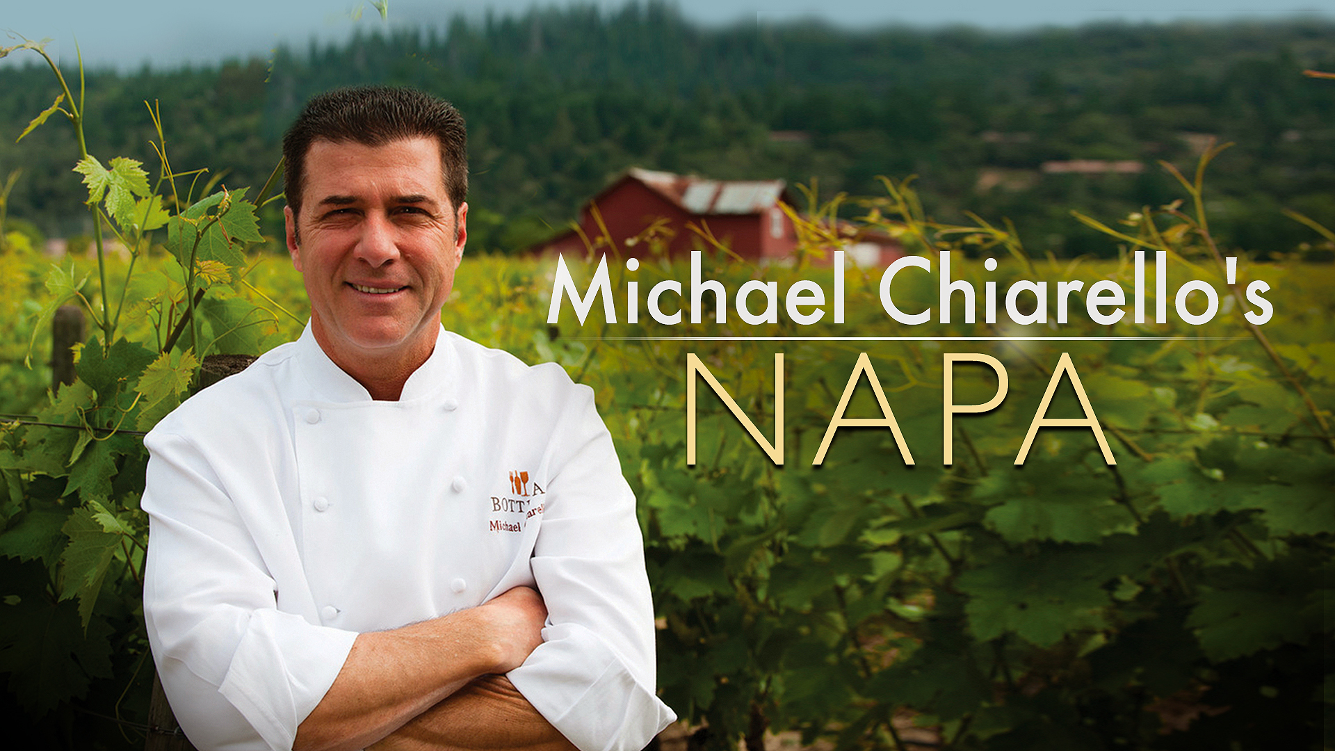 Michael Chiarello's Napa