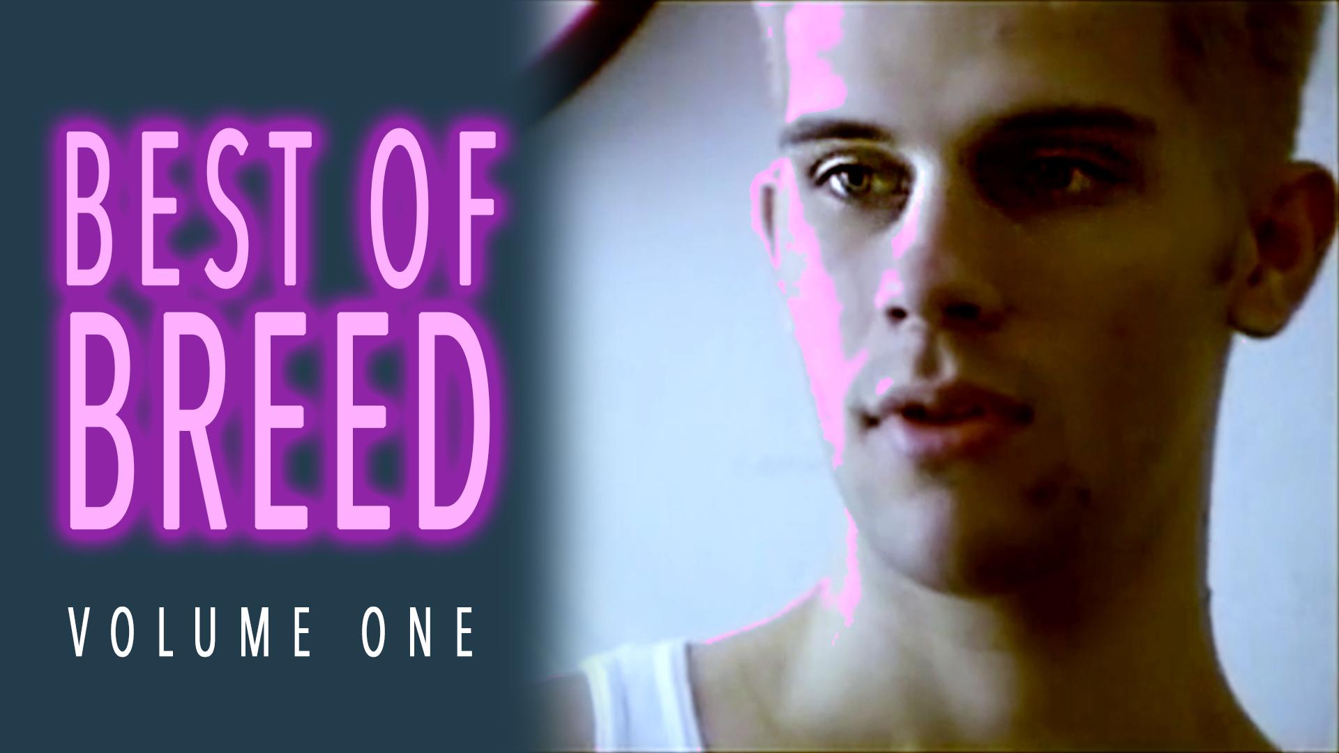 Best of Breed, Volume 1