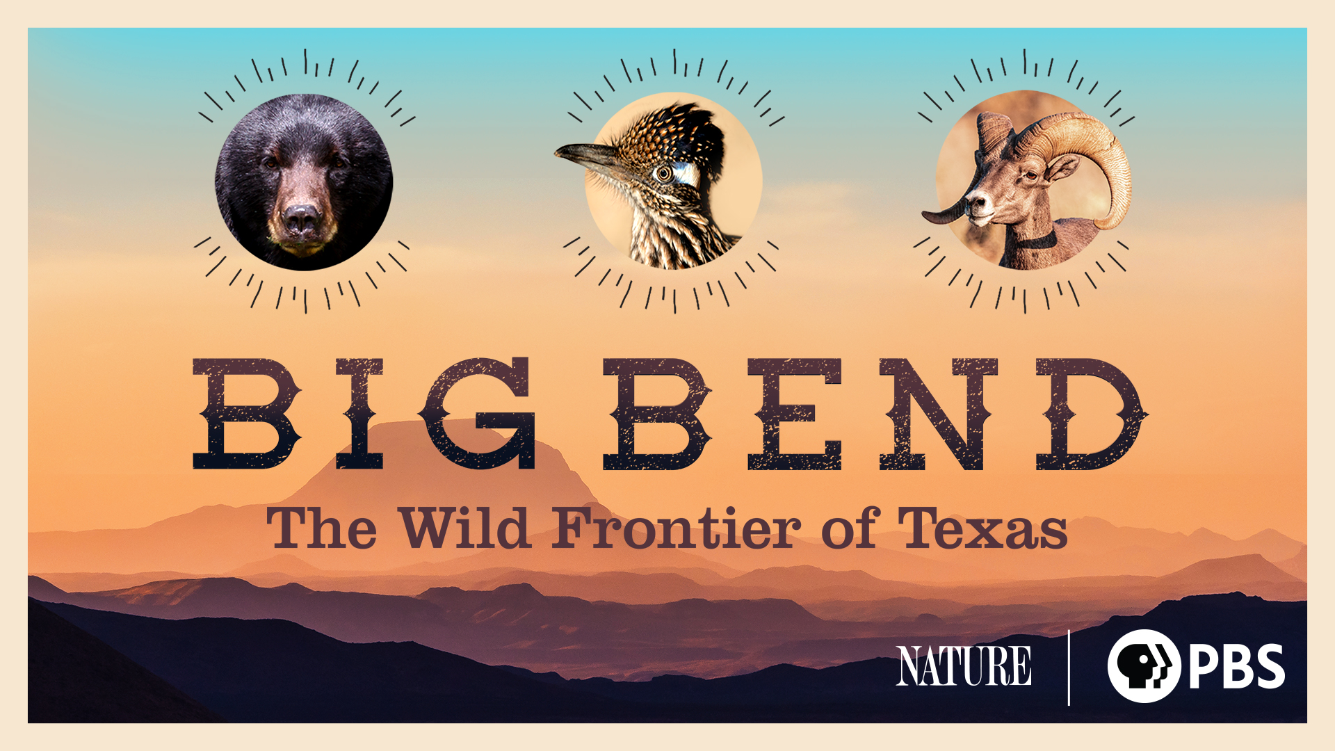 Big Bend: The Wild Frontier of Texas