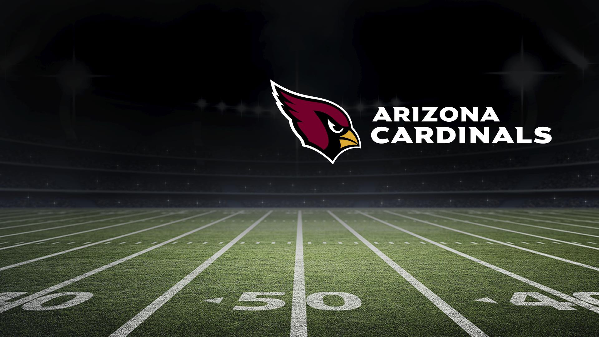 All Or Nothing: A Season With The Arizona Cardinals - Season 1