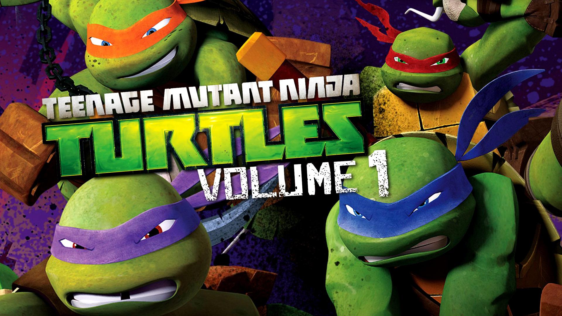 Teenage Mutant Ninja Turtles Volume 1