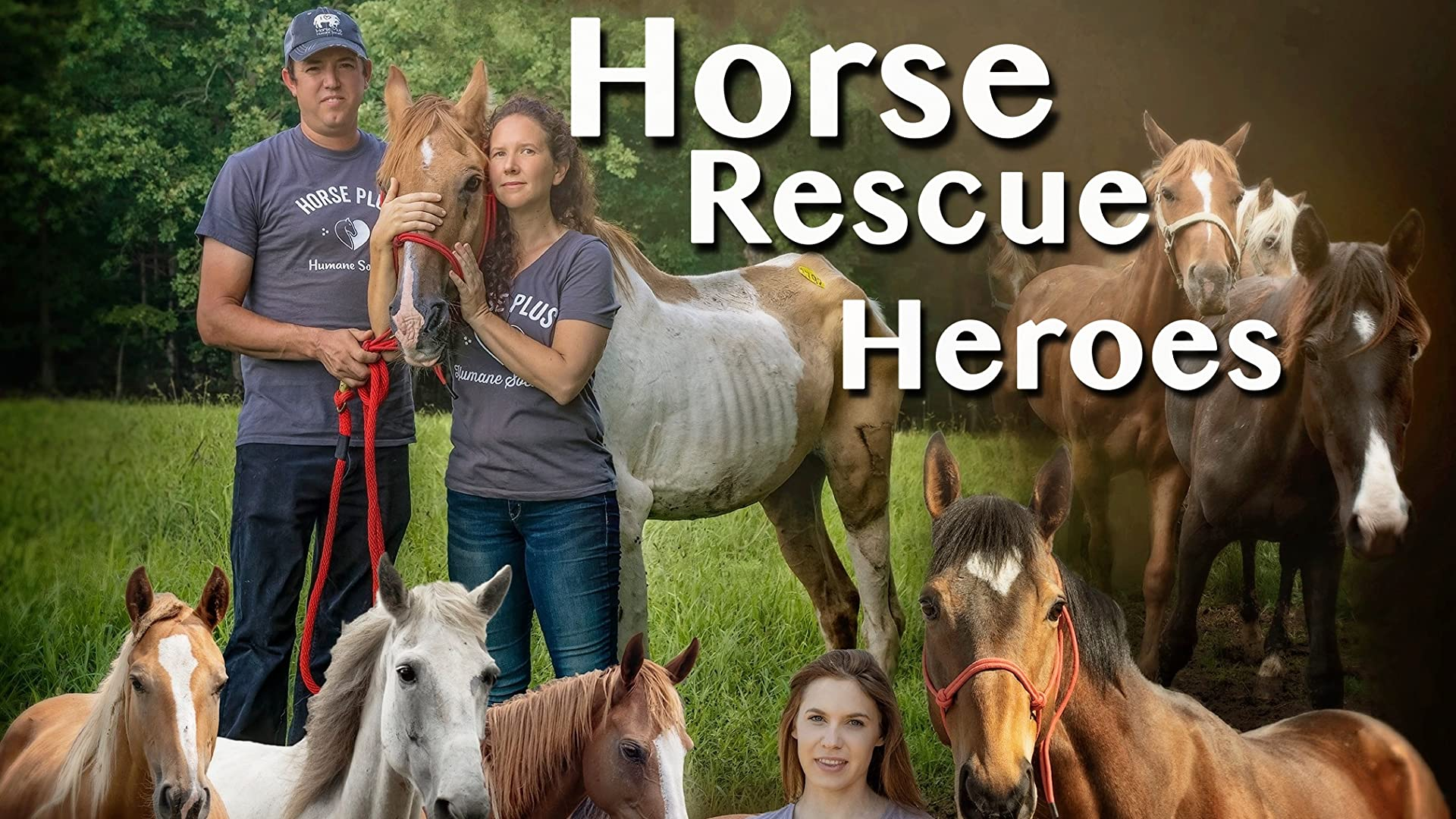 Horse Rescue Heroes