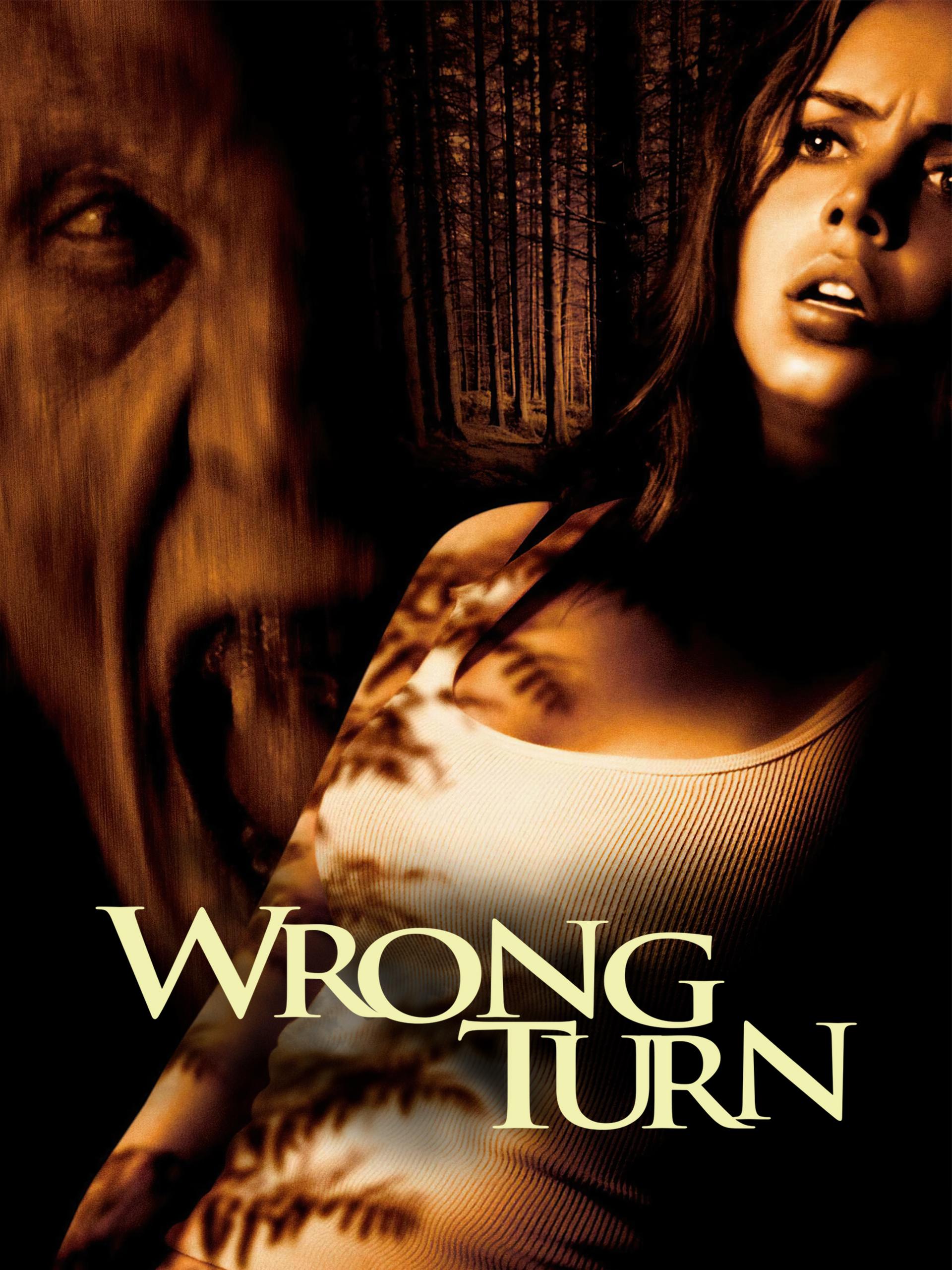 Wrong Turn (2003) Dual Audio Hindi ORG 350MB BluRay 480p ESubs Download