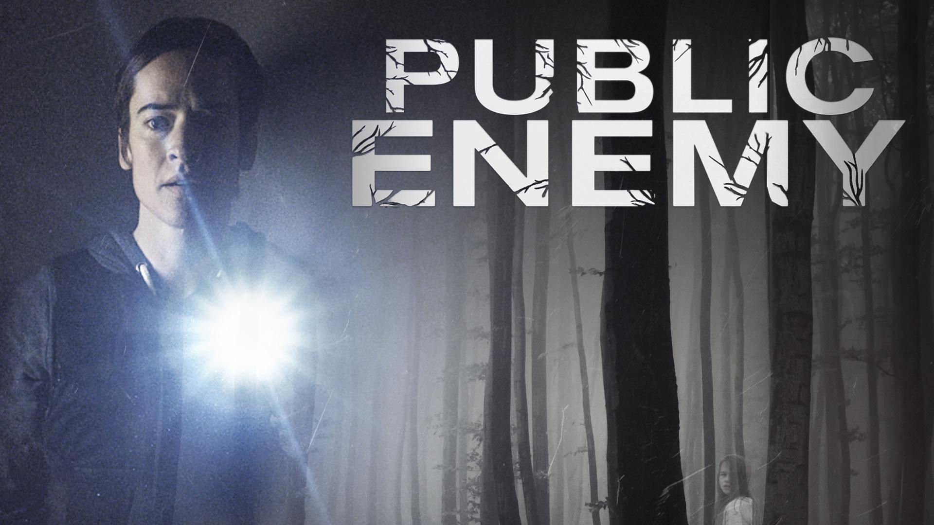 Public Enemy Season 1 (English Subtitled)