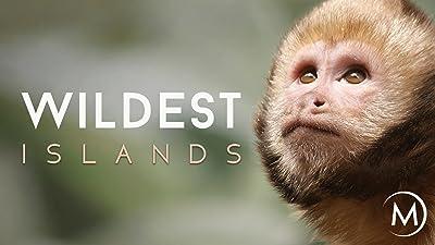 Wildest: Islands