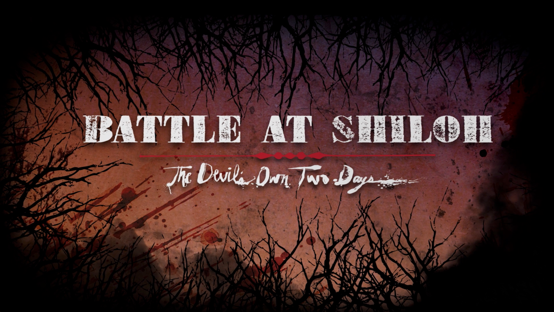 Battle at Shiloh - The Devil's Own Two Days