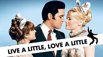 Live a Little, Love a Little
