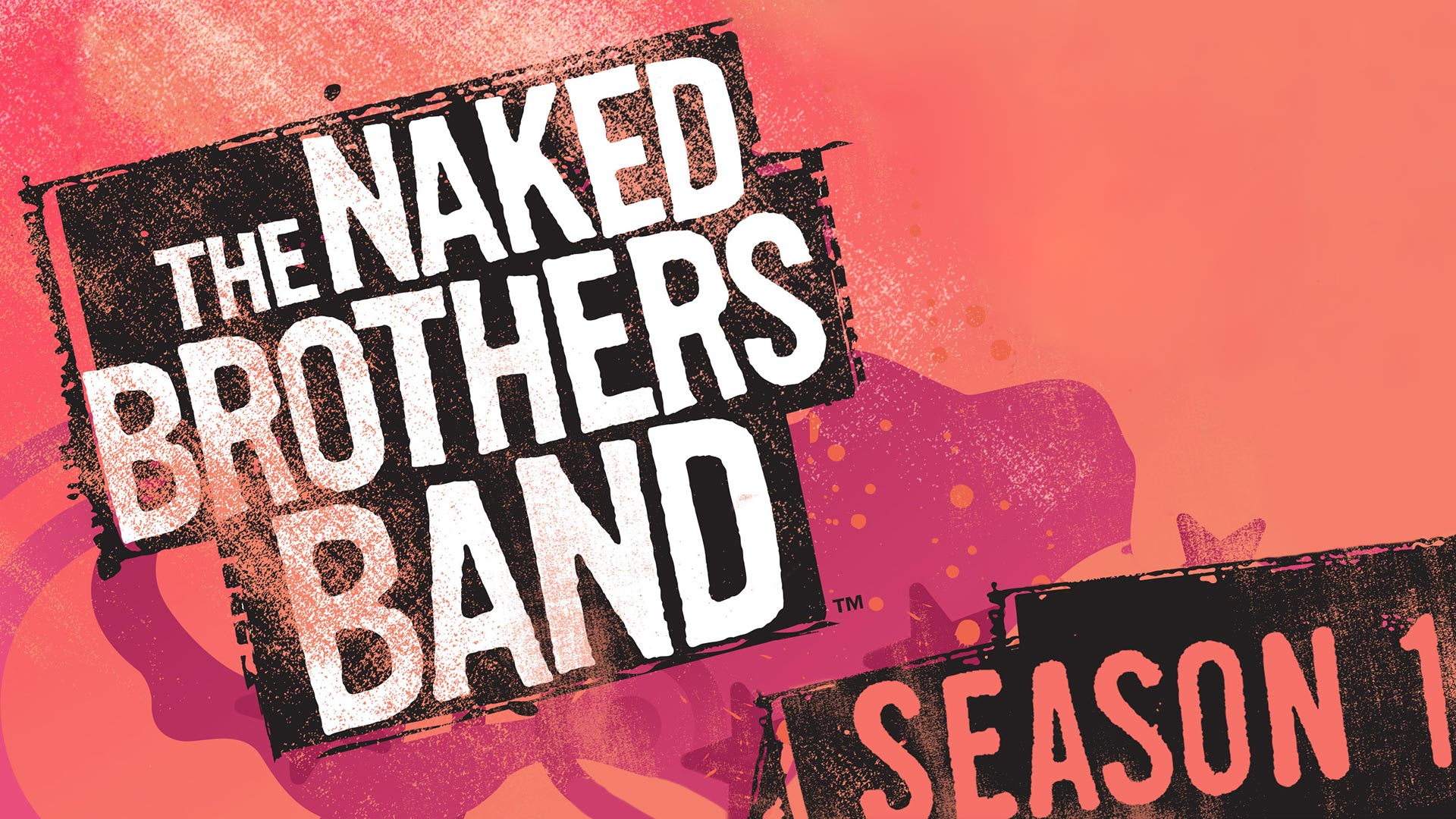 The Naked Brothers Band Season 1