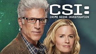 CSI: Crime Scene Investigation, Season 14
