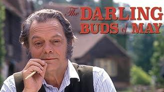 The Darling Buds of May, Season 1
