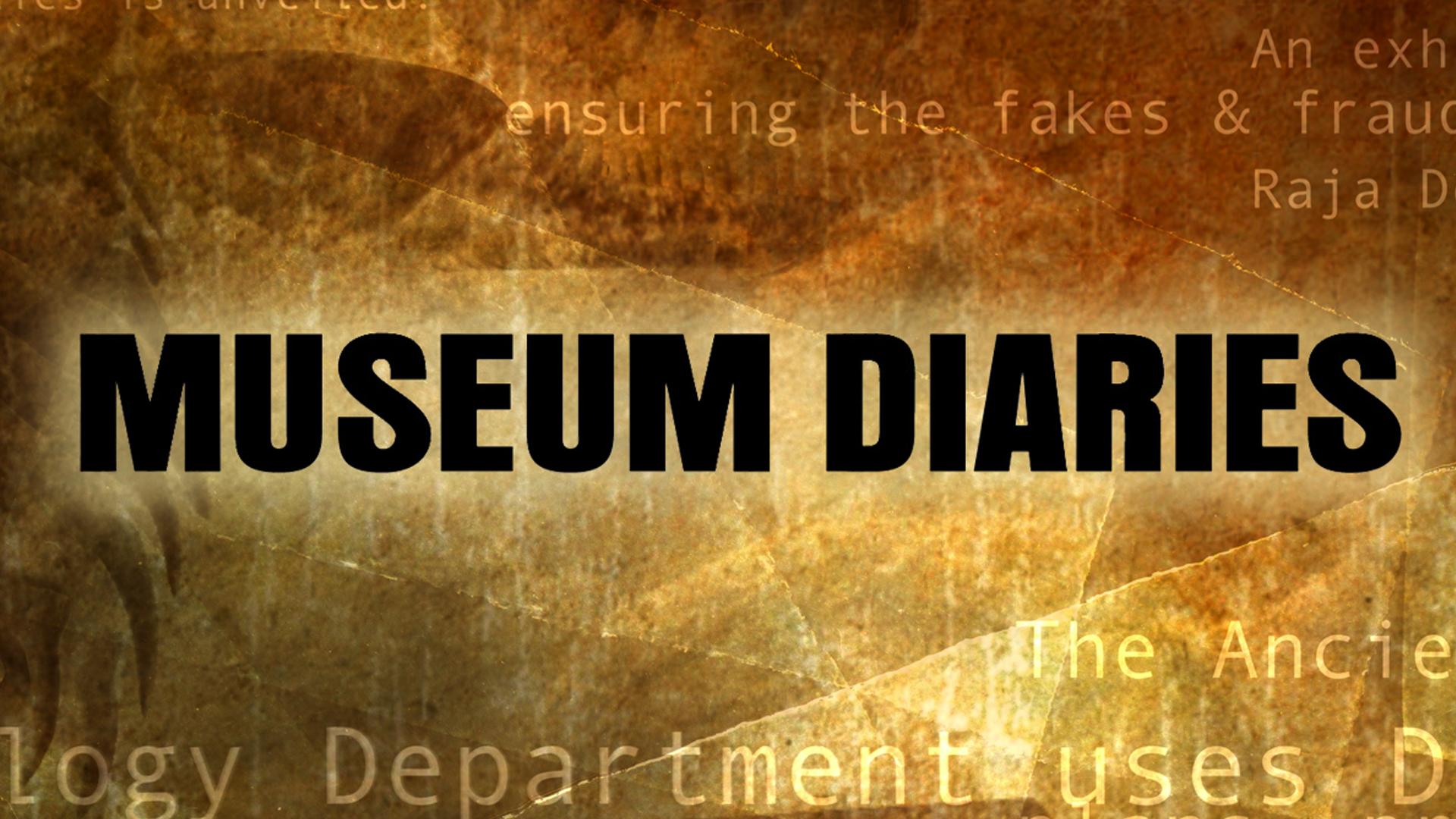 Museum Diaries