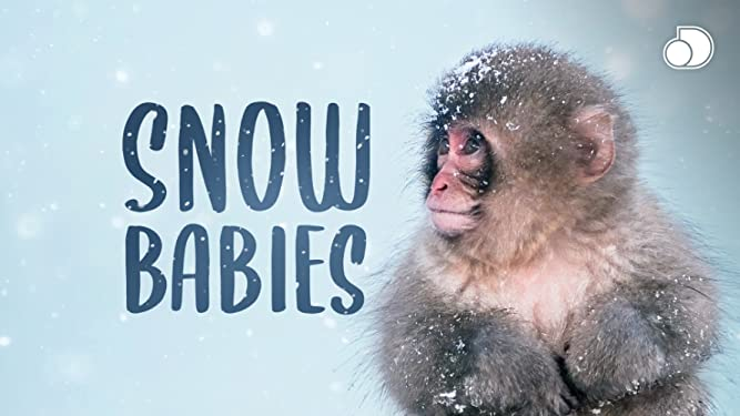 Snow Babies - Season 1