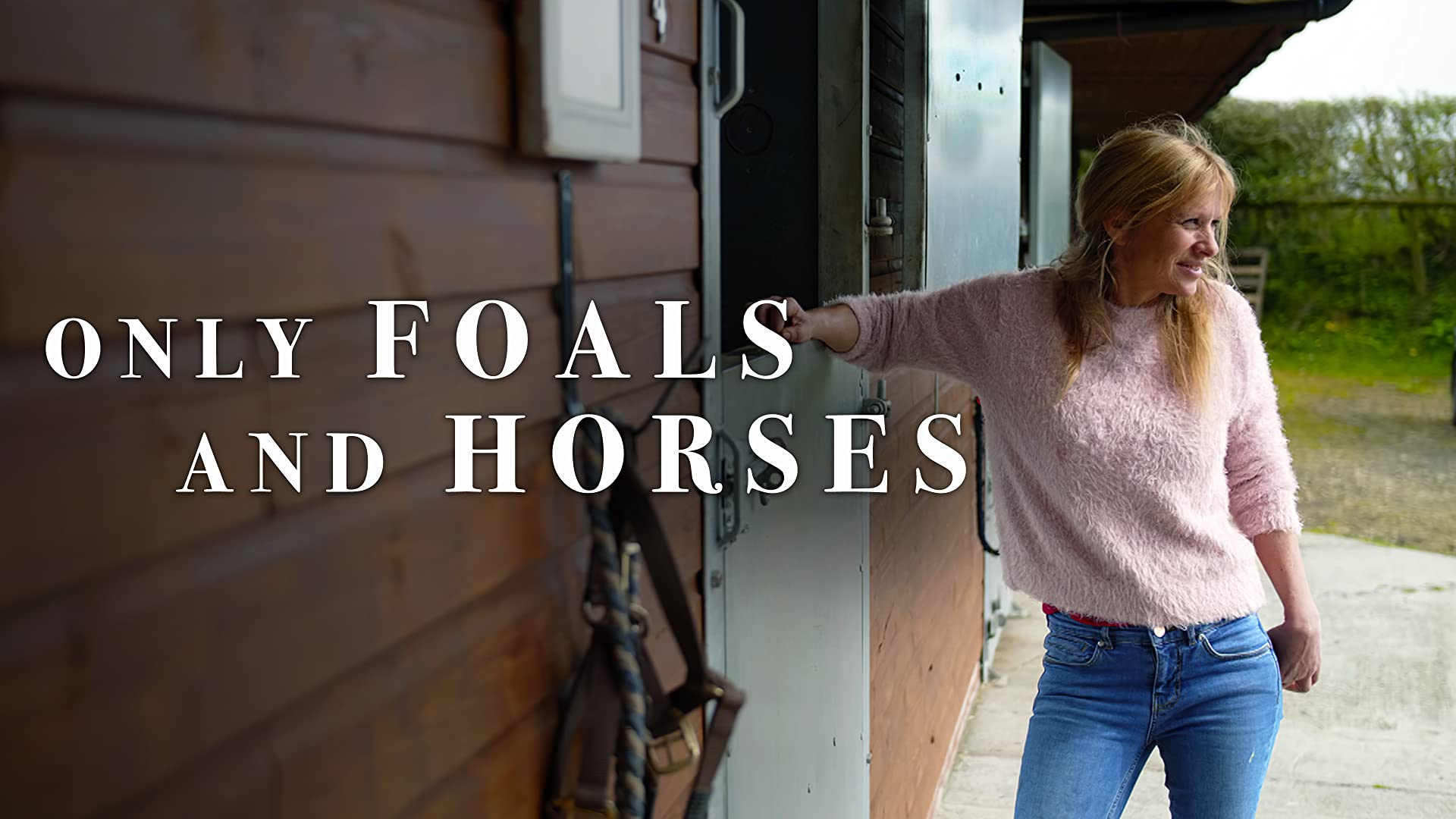 Only Foals and Horses - Series 1