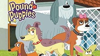 Pound Puppies Season 1