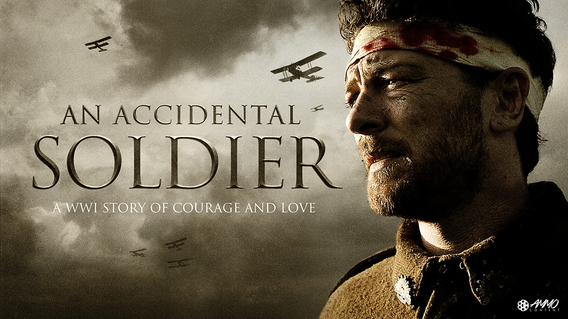 An Accidental Soldier