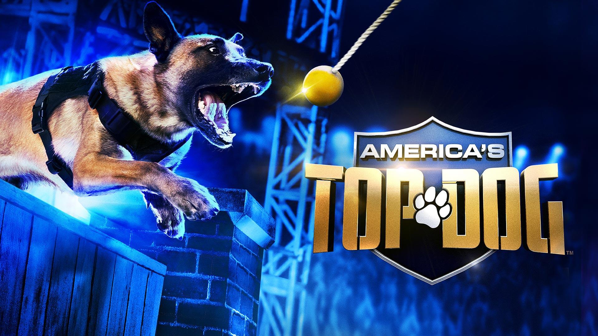 America's Top Dog Season 1