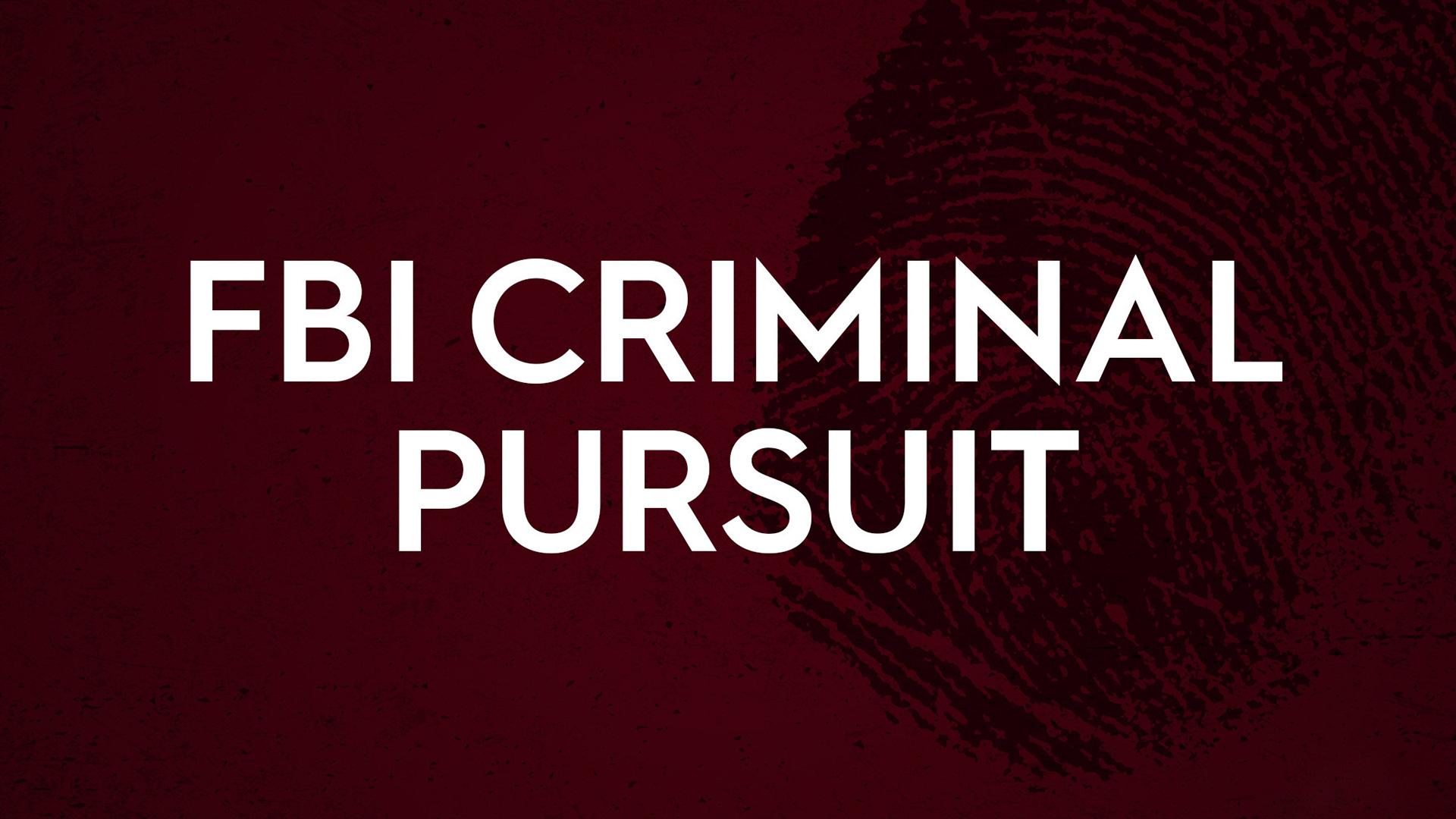 FBI: Criminal Pursuit Season 1
