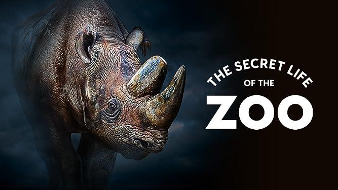 The Secret Life of the Zoo - Season 2