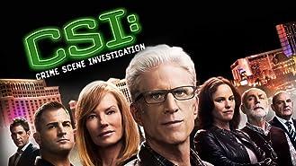 CSI: Crime Scene Investigation, Season 12