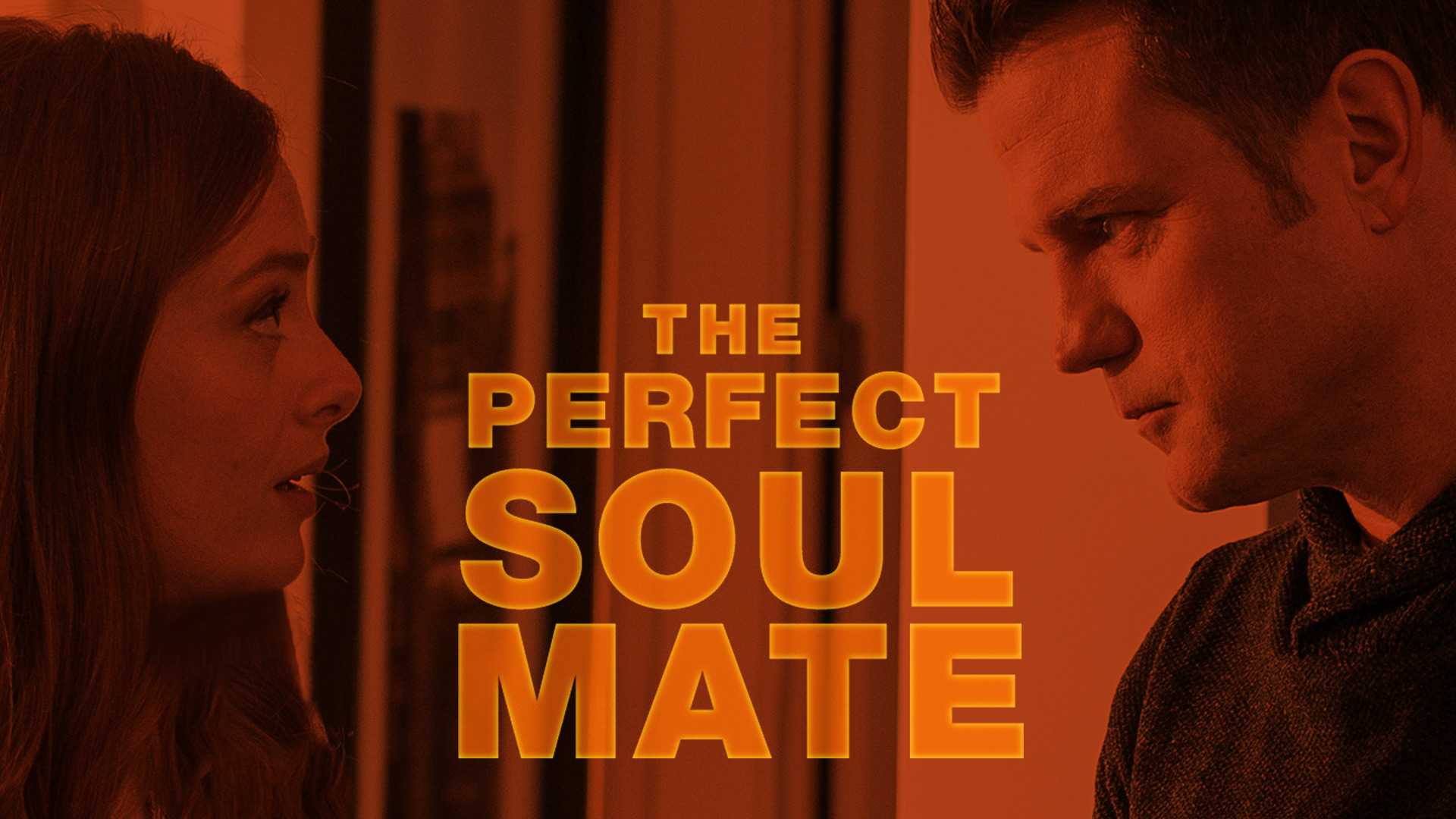 THE PERFECT SOULMATE