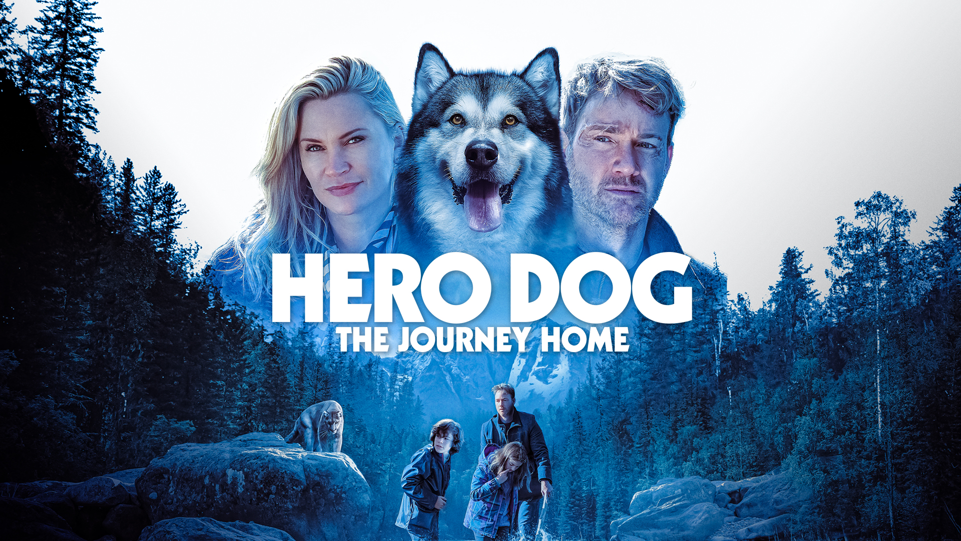 Hero Dog: The Journey Home